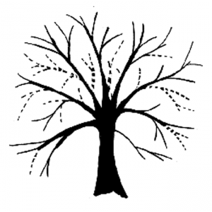 We provide Sick Tree Care in Fort Worth, TX.
