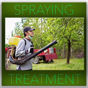 Spraying treatment