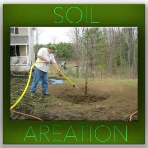 SOIL-AERATION- tree service fort worth