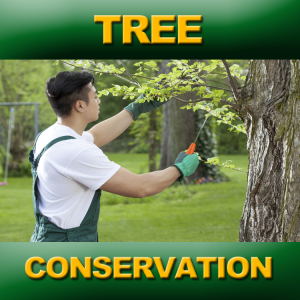 TREE-CONSERVATION-