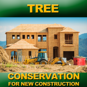 TREE-CONSTRUCTION