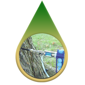 Tree-injections - tree service fort worth