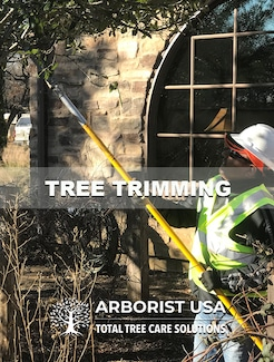 We provide Tree Trimming & Tree Pruning in Fort Worth, TX.
